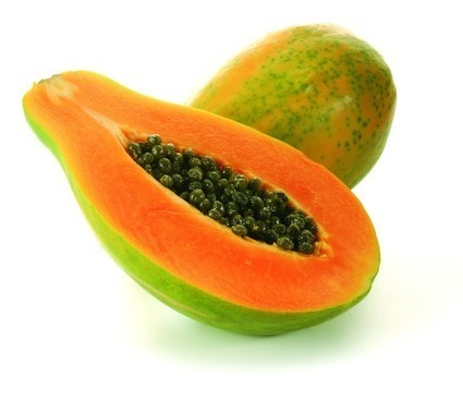 "Un cultivo transgénico ""made in Venezuela"": la papaya (lechosa) transgénica 