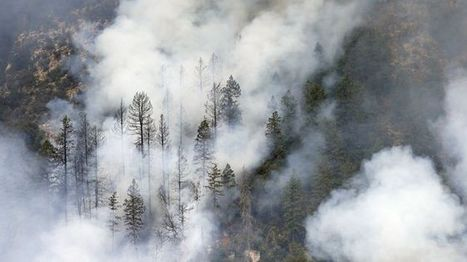 Ariz. wildfire expected to nearly triple in size | gabbour geo 160 | Scoop.it