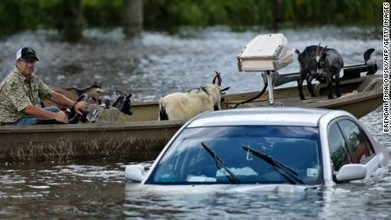 Louisiana flood: Worst US disaster since Hurricane Sandy, Red Cross says | Sustain Our Earth | Scoop.it