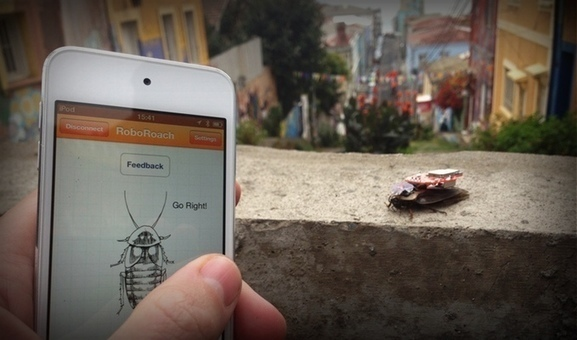Post-Sapiens, les êtres technologiques - Biohacking: How To Control Living Cockroaches With Your Smartphone Using Roboroach