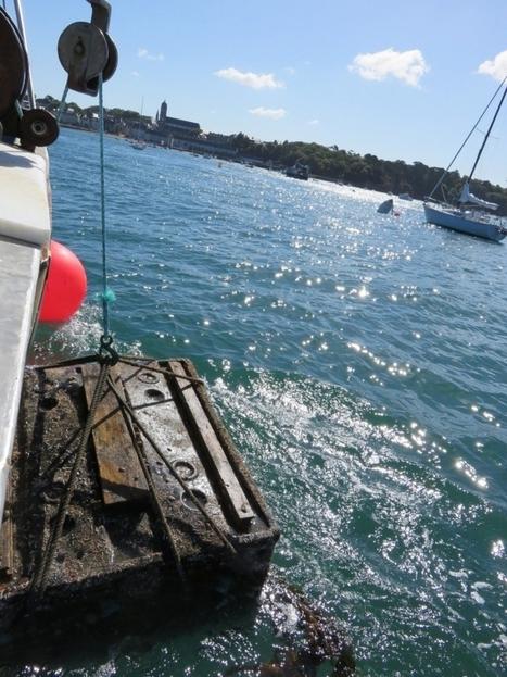 Du vin de Bergerac immergé à 15 mètres dans la baie de Saint-Malo | Agriculture en Dordogne | Scoop.it