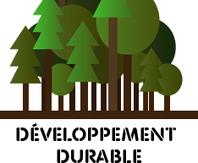 Des nouvelles vidéos à découvrir pour promouvoir le bois tropical certifié ! | LABELS Actualités | Scoop.it