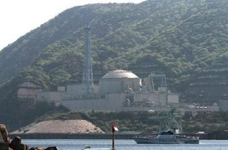 Japon : confirmation d'une faille active sous un réacteur nucléaire à Tsuruga | Japan Tsunami | Scoop.it