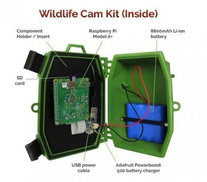 Naturebytes wildlife cam kit | Raspberry Pi | Scoop.it
