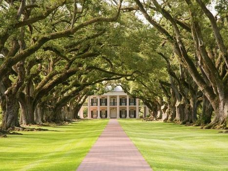 10Best: Historic Southern plantations - USA TODAY | Oak Alley Plantation: Things to see! | Scoop.it