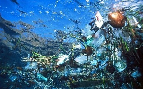 "A WAKE-UP WATCH: ""Inside the Great Garbage Patch of the World""  - The Plastic Curse 