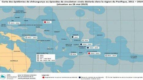 Chikungunya : la moitié des pays océaniens touchés | EntomoNews | Scoop.it