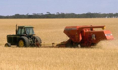 Weather Extremes Slash Cereal Yields | Food Security | Scoop.it