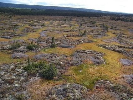 #Arctic #Methane Emissions 'Certain to Trigger Warming' #climate | Messenger for mother Earth | Scoop.it