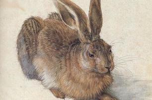 L'animal dans l'art, nouveau cycle de cours à l'Ecole du Louvre | Histoire des Arts au collège | Scoop.it