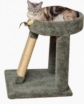 Spending time with the most amazing pet | Custom made cat condos | Scoop.it