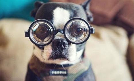 Анализ сайта по90параметрам: обзор инструмента | MarTech : Маркетинговые технологии | Scoop.it