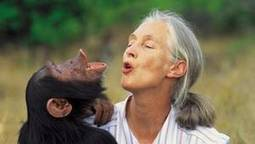 Jane Goodall: 'My focus is the next generation' - Globe and Mail | A Few Random Things that I Find Interesting | Scoop.it
