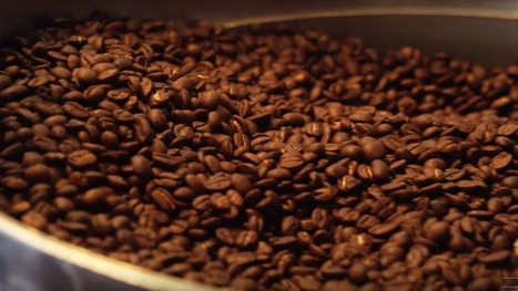 Watch: What It Takes to Properly Roast Coffee Beans | Urban eating | Scoop.it