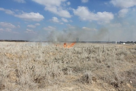Photos and video: Israeli forces teargas Palestinian demonstrators at Intifada march east of Gaza | Occupied Palestine - In Photos | Scoop.it