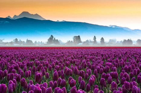 10 Spectacular Places To Visit During Spring Time | Nature and Travel | Scoop.it