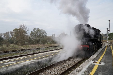 10 tips for the nature train in Tuscany | Italia Mia | Scoop.it