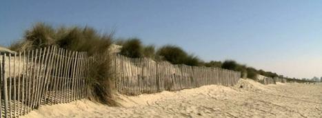 Erosion du littoral : l'Homme contraint de se plier aux règles de la nature | Confidences Canopéennes | Scoop.it