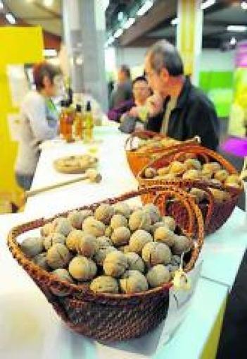 Route de la noix : le voyage croquant | Agriculture en Dordogne | Scoop.it