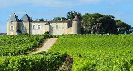 La loi Evin assouplie àla demande du monde du vin | Le vin quotidien | Scoop.it