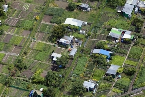 Le projet agricole du Grand Roissy | L'EPA Plaine de France | Projets & actu | Scoop.it