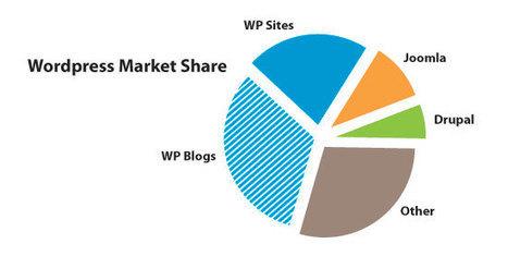 Wordpress vs Joomla vs Drupal - Infografía 2016   Herramientas WEB 4.0   Scoop.it