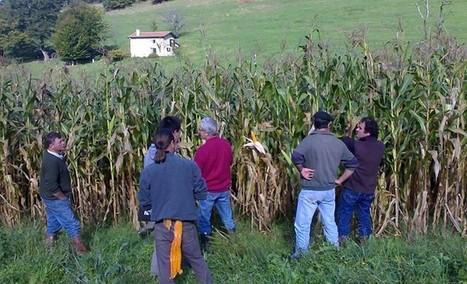 L'agriculture biologique : une solution efficace pour la protection de l'eau en Aquitaine | BIENVENUE EN AQUITAINE | Scoop.it