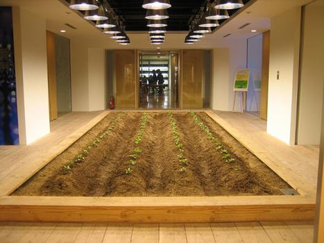 #Environnement : Au Japon, une société invente le métro-terreau-dodo | Société durable | Scoop.it