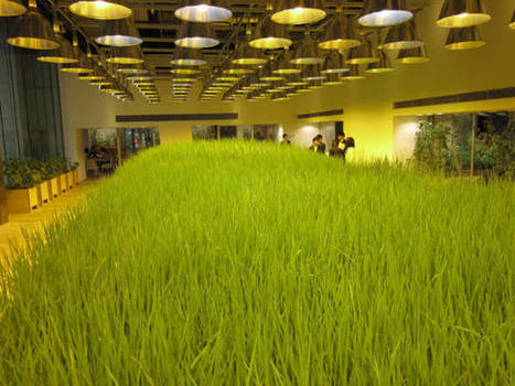 These Office Workers Can Tend Crops While They're In Boring Meetings | Real Estate Plus+ Daily News | Scoop.it