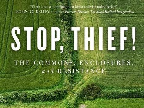 """""""Stop, Thief!"""" Peter Linebaugh's New Book about the Commons 