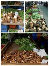 Taro in the Levant | Agricultural Biodiversity | Scoop.it