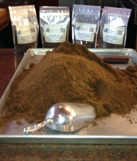 Cricket Flour - Human grade 100% cricket flour!   Insects for People -Where to Purchase Insects, Crickets, for Human Consumption and learn alot about eating them.   Scoop.it