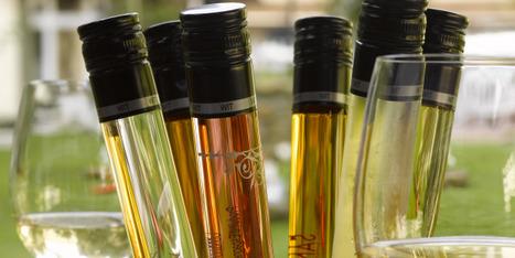 Voici pourquoi WIT, le vin en tube, va décoller   Communication, Marketing Web&Vin   Scoop.it