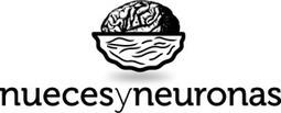 ¿Cómo es el cerebro creativo? - nuecesyneuronas l Blog   Lluvia de ideas TIC   Scoop.it