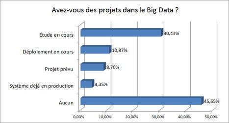 Une majorité de DSI français met le cap sur le Big Data | Le meilleur du big data | Scoop.it