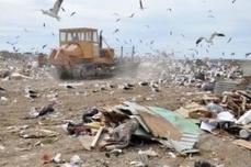 """""""Se gastaron $38 millones sin que se mejorara en nada la gestión de residuos sólidos urbanos""""   Noticias Santa Cruz   Scoop.it"""