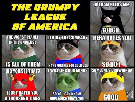 Twitter / Sarcasmistan: the grumpy league of cats ...   Cats   Scoop.it