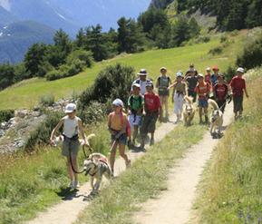 Cani-randonnée | Aussois | Scoop.it
