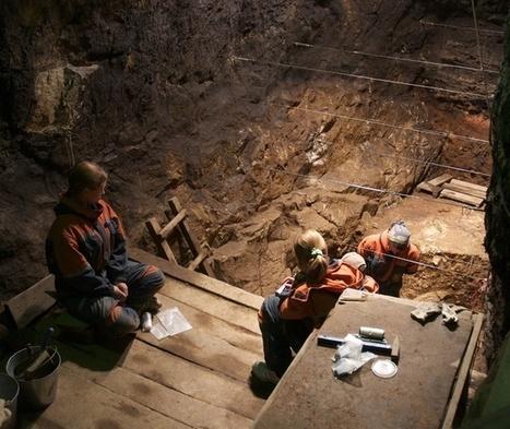 El ADN de los neandertales revela que las cuatro especies humanas se aparearon hace 50.000 años   4º de ESO. Bloque 3: La evolución de la vida   Scoop.it