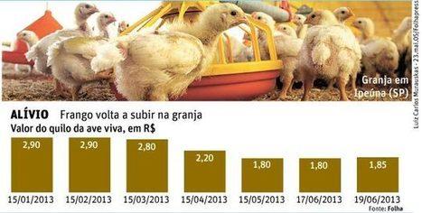 Folha de S.Paulo - Colunistas - Vaivém - Demanda maior faz preço do frango voltar a subir - 20/06/2013 | Agribusiness - Brasil | Scoop.it