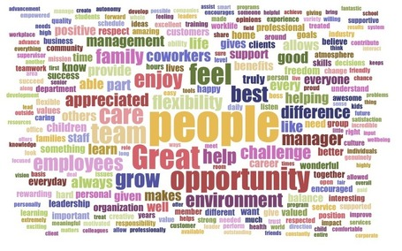 "Wordcloud: Answers from the ""I love my job"" survey  