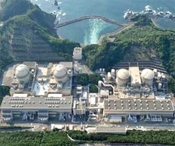 Two Japan nuclear reactors can stay online: watchdog | Sustain Our Earth | Scoop.it