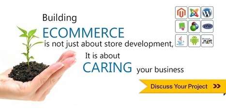 Ecommerce development services | Indies | It Development and Consulting Services | Scoop.it