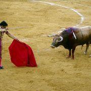 clothing in Spain | Spain, Mara Hoyle | Scoop.it