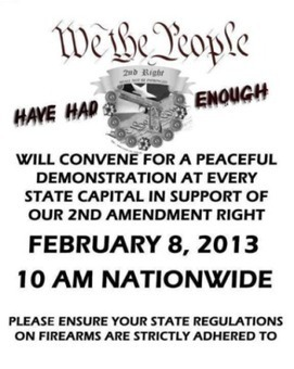 2nd Amendment Rallies Scheduled for Feb 8 - Massive Rally in DC Planned for May 25 | The Right to Bear Arms, or Not? | Scoop.it