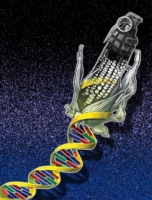 Muzzled by Monsanto | Food issues | Scoop.it