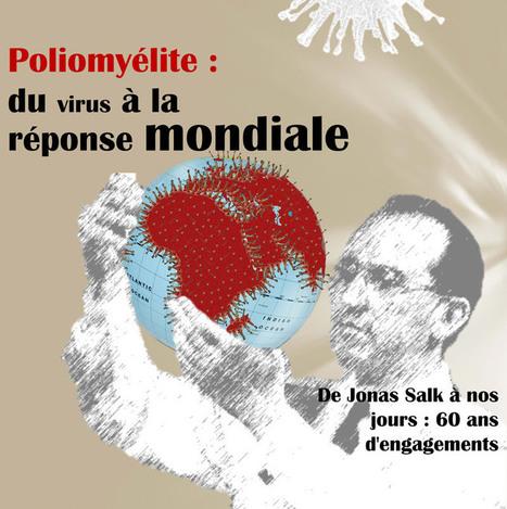 Poliomyélite : du virus à la réponse mondiale - Sciences pour tous | Sciences Pour Tous | Scoop.it