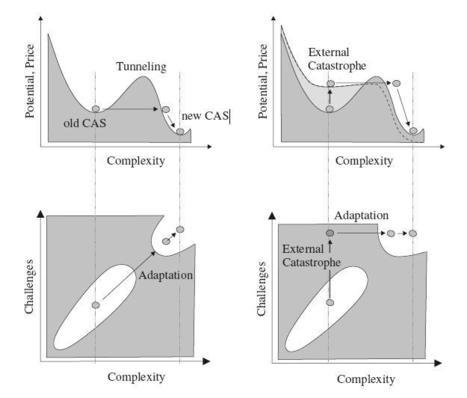 Innovation as Adaptation | Kreativitätsdenken | Scoop.it