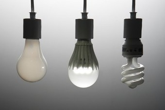 Pro-Environment Light Bulb Labeling Turns Off Conservatives, Study Finds - National Geographic | Social Science Studies | Scoop.it