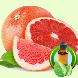 Pink Grapefruit California ESSENTIAL OIL | Essential-Oils | Scoop.it